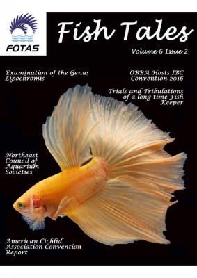 FOTAS_Fish_Tales_06.2