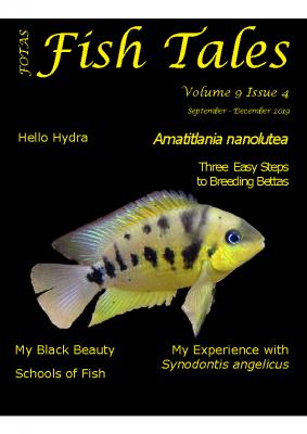 FOTAS_Fish_Tales_09.4